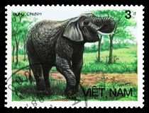Asian Elephant (Elephas maximus), Animals serie, circa 1987. MOSCOW, RUSSIA - SEPTEMBER 26, 2018: A stamp printed in Vietnam shows Asian Elephant (Elephas royalty free stock photography