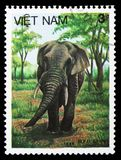 Asian Elephant (Elephas maximus), Animals serie, circa 1987. MOSCOW, RUSSIA - SEPTEMBER 26, 2018: A stamp printed in Vietnam shows Asian Elephant (Elephas stock photo