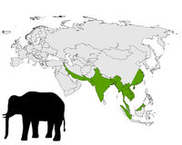 Asian elephant range Royalty Free Stock Images
