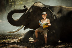 Asian elephants in the wild tales I read his children`s book rea. Ding, relationship stock photography