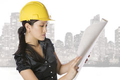 Asian engineer architect Stock Photography