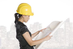 Asian engineer architect Royalty Free Stock Image