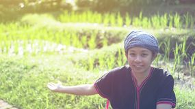 Asian ethic woman with native dress smile at her organic rice fi royalty free stock photography