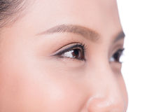 Asian eye woman eyebrow eyes lashes over white. Stock Photography