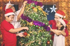Asian family decorating a fir tree together Royalty Free Stock Photo