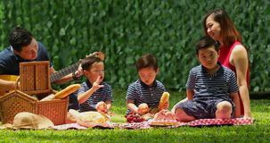 Asian family enjoying picnic at park stock video