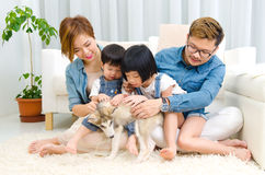 Asian family and pet. Asian family playing with pet in the living room Stock Image