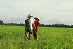 Asian farmer Stock Image