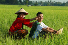 Asian farmer. At paddy field Stock Image