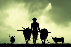 Asian farmer in the farmland Royalty Free Stock Photography
