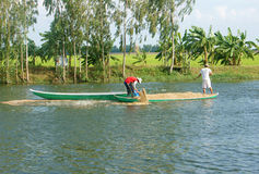 Asian farmer feeding, fish pond, fishery Stock Photos