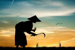Asian farmer Stock Images
