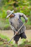 Asian farmer preparing the ground Stock Images