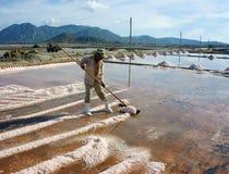 Asian farmer, salt plantation, Vietnamese salina Stock Photography