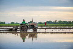 Asian farmer in tractor preparing land with seedbed cultivator, Stock Images