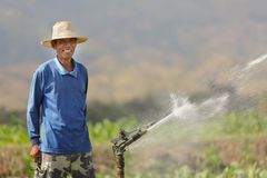 Asian farmer watering Stock Image
