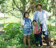 Asian farmers are teaching their children to care for the plants with patience and effort. Asian farmers are teaching their children to care for the plants with Royalty Free Stock Images