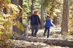 Asian father and son hiking together in a forest Stock Image