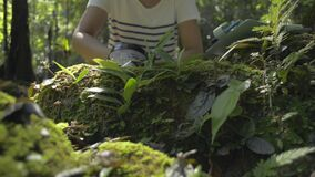 Asian female biologist use a magnifying glass to see the details of flora and fauna in tropical forest ecosystem.
