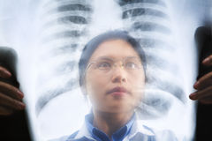 Asian female doctor busy working on x-ray result Stock Images