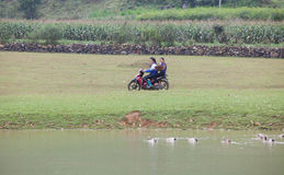 Asian female farmer going to work on the field by motorcycle Stock Photography