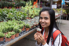 Asian female hold cactus tree in garden nursery Stock Photography