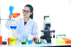 Medical technologist working in laboratory. Asian female medical technologist working with chemical in research laboratory Stock Images