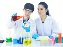 Medical technologist working in laboratory. Asian female medical technologist working with chemical in research laboratory Royalty Free Stock Image