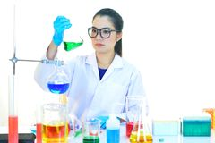 Medical technologist working in laboratory. Asian female medical technologist working in research laboratory Royalty Free Stock Images
