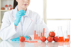 Asian female scientist drop the cure for genetic modification Royalty Free Stock Photos