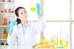Asian female scientist drop the cure for genetic modification Stock Photography