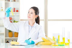 Asian female scientist thinking and holding an corn for genetic Stock Photo