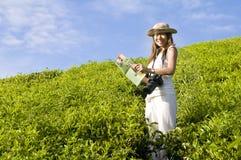 Asian female tourist Royalty Free Stock Photos