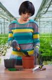 Asian female transplanting flower Stock Image