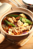 Asian fish curry. Traditional asian spicy fish curry Royalty Free Stock Photography