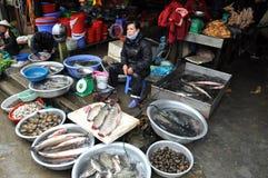 Asian fish market in Sapa, Vietnam Stock Photography