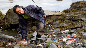 Asian fisherman caught salmon in Seward. Seward, Alaska, United States - September 10, 2014: Asian man in 30s caught salmon and is about to kill it on beach in Royalty Free Stock Photography