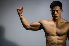 Asian Fitness Model Flexes Bicep Muscle. An Asian fitness model flexing his bicep muscle. Front facing Stock Photos
