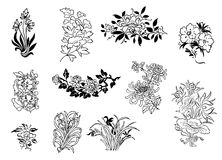 Asian flower drawings Stock Photography