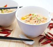 Asian Food. Fresh asian food in beautiful table ware Royalty Free Stock Image