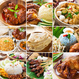 Asian food collection. Various Asia cuisine, curry, rice, noodles, biryani, roti chapatti, nasi kerabu, nasi lemak, satay and roast chicken royalty free stock photo