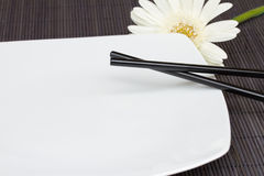 Asian food concept. Empty plate with chopsticks stock image