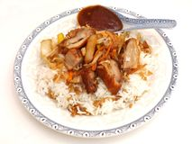 Asian Food with duck meat Stock Image