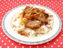 Asian Food with duck meat Royalty Free Stock Photo
