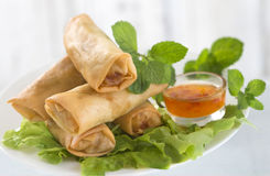 Asian food,frie spring roll and salad Stock Image