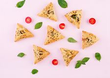 Free Asian Food. Samsa Samosa With Chicken Fillet And Green Herbs Royalty Free Stock Photography - 151760897