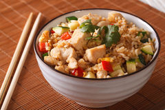 Asian fried rice with chicken and vegetables close up. horizonta Royalty Free Stock Image