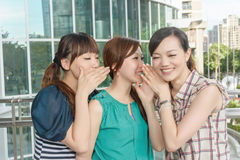 Asian friends' whisper. Closeup portrait royalty free stock photography