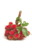 Asian fruit , Fresh rambutan. With leaf Royalty Free Stock Photos
