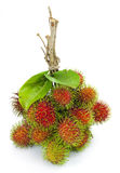 Asian fruit rambutan Stock Image